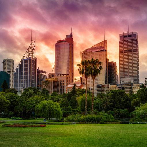 Royal Botanical Gardens, Sunset | Sydney Shots