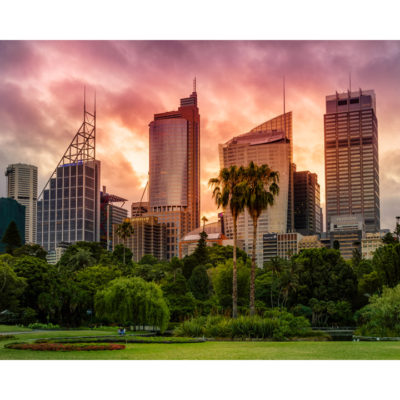Royal Botanical Gardens, Sunset 10x8 | Sydney Shots