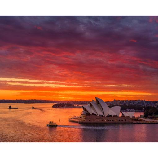 Sydney Harbour, Sunrise, 10x8 | Sydney Shots